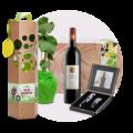 Wijnboompje-in-pakket